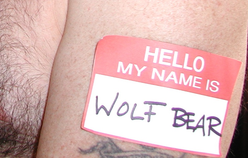 wolfbear badge